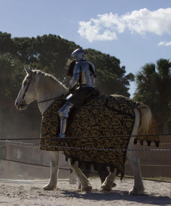 Medieval Fair